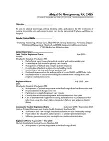 Rn Sample Resume by Resume 2 Before