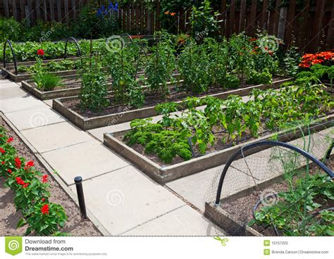 vegetable beds raised vegetable garden beds stock photography image 10157202