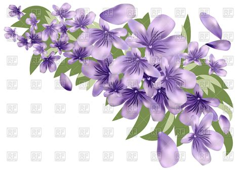 royalty free clipart images lavender flower with leaves royalty free vector clip