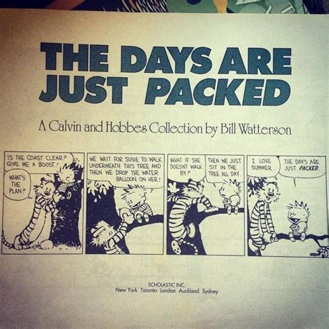 the days are just packed a calvin and hobbes collection 22 best images about calvin comics on the