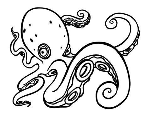 dibujo de pulpo enfadado para colorear dibujos net