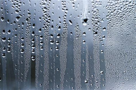 optimale luftfeuchtigkeit im haus optimale luftfeuchtigkeit f 252 r ein gutes wohnklima