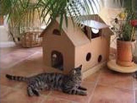 [tuto]maison pour chat youtube