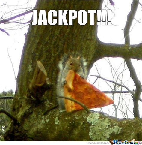 Funny Squirrel Memes - squirrel memes best collection of funny squirrel pictures