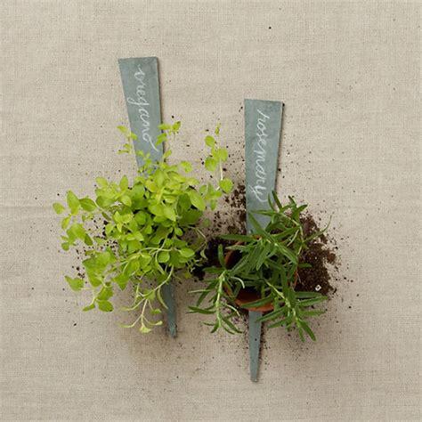 Slate Plant Markers Slate Plant Labels Terrain