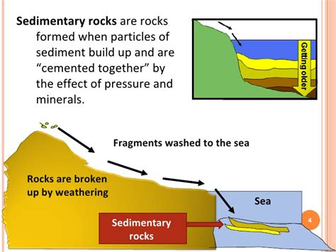 diagram of how sedimentary rocks are formed rock revision