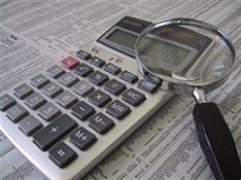 forensic accounting masters programs forensic accounting degree
