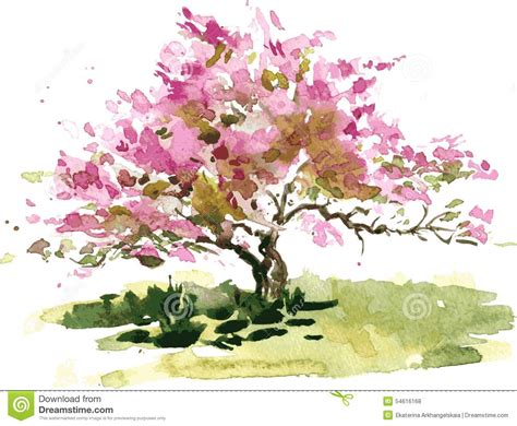 cherry blossom tree l cherry blossom tree illustration de vecteur image 54616168