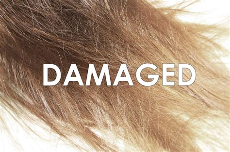 how do you if your is four treatments to restore your damaged hair aricea