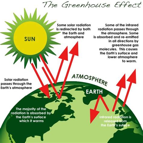 Green House Gasses by Greenhouse Effect Definition Www Pixshark Images