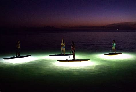 kayak surfing between two boats kayak or sup board at night with the nocqua led light