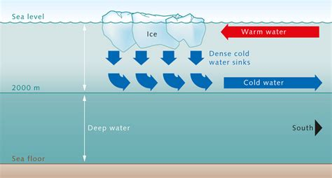 What Makes Cold Water Sink Toward The Floor by Science Explained Why Does Water Freeze Faster Than