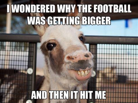 Animal Pun Meme - funny animal memes puns