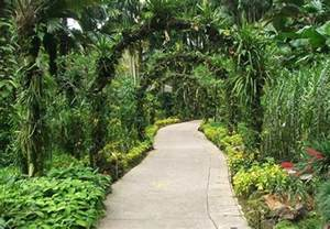 Small Tropical Garden Ideas Tropical Garden Landscape Ideas Photograph Tropical Garden
