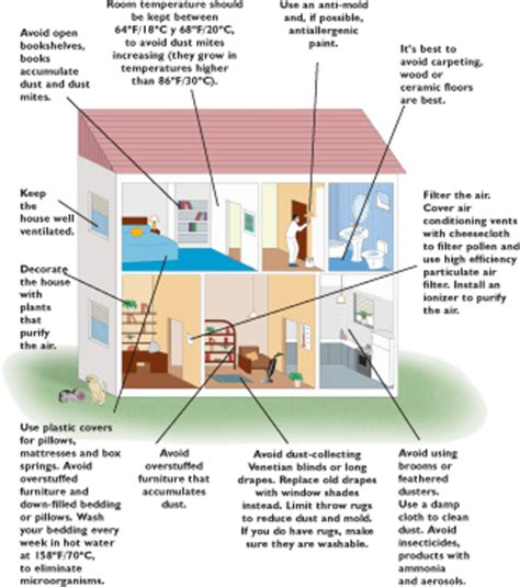House Allergies 28 Images House Cleaning Allergies Tips For Allergy Sufferers In