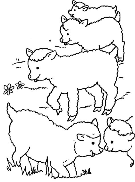 baby lamb coloring pages az coloring pages