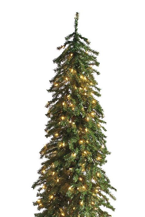 grandinroad noblis fir tree for sale pre lit evergreen alpine trees grandin road