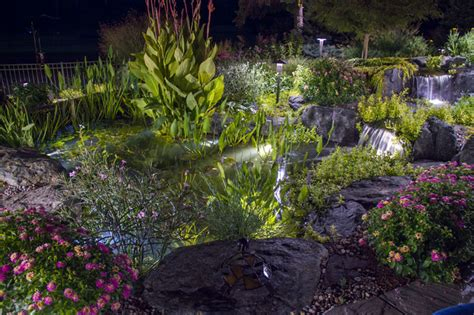 pond and landscape led lighting tropical landscape