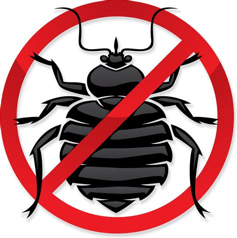 exterminating bed bugs bug control clipart clipart suggest