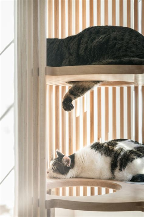 minimalist cat tree japanese designer creates stylish cat furniture for a minimalist home