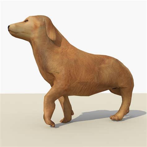 animated golden retriever 3d model golden retriever animations