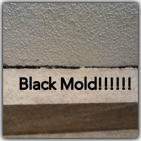 black mould on bedroom ceiling the black mold on the bathroom ceiling picture of cavalier hotel virginia beach