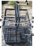 Cantelan Kandang Burung cegah agar burung tidak lepas dan cara menangkapnya