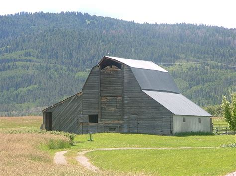 barn home decor enticing ways to improve your rustic barns skills home decor