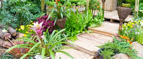 fiori e giardini mostre giardinaggio fiere dei fiori 2018 pianetadonna it