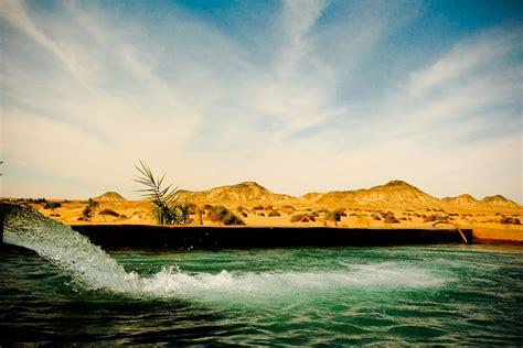 western sahara desert oasis western sahara vantage travel