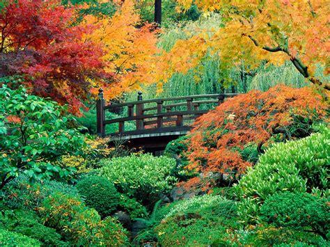 wallpaper free garden garden wallpaper free download pic gallery