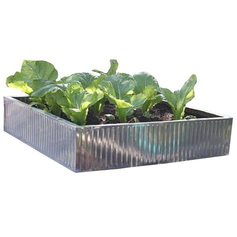 galvanized steel garden beds viagrow 35 in x 35 in x 7 8 in galvanized steel raised