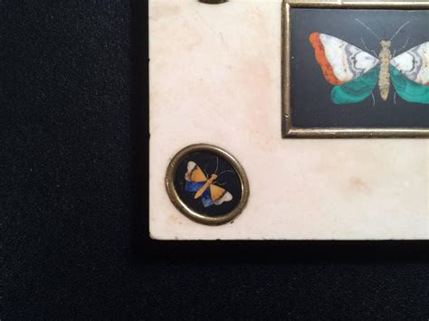 Butterfly Desk Accessories Pietra Dura Butterfly Paperweight At 1stdibs