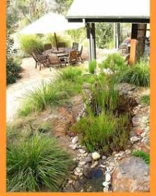 Australian Landscape Design Apps 1000 Images About Gardens On