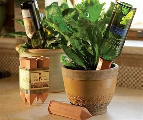 Wine Bottle Planter Self Watering by 22 Gardening Hacks That Ll Change The Way You Garden