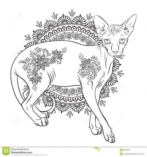 sphynx cat coloring page free coloring pages of sphynx