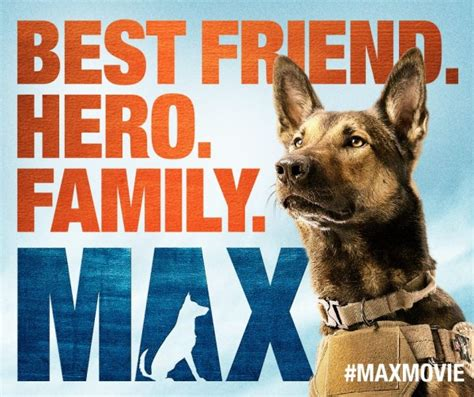 house for dogs movie tissue box alert max movie features military dog with ptsd
