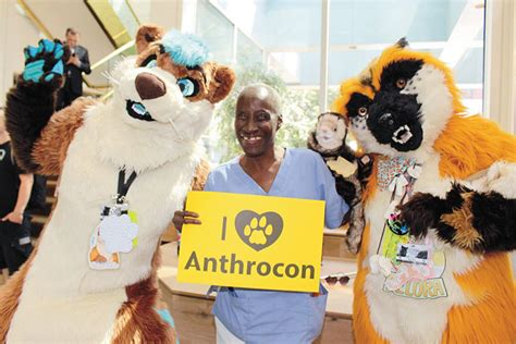 anthrocon convention steps out in full fursuits new