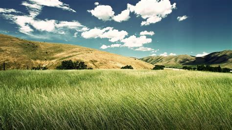 imagenes paisajes cos verdes wallpapers de paisajes verdes y el todo en nuestra vida