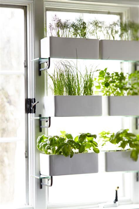 kitchen window privacy garden  ikea glass shelves