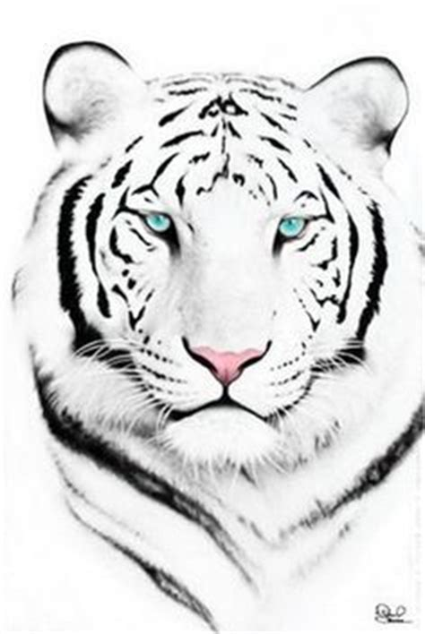 white tiger tattoo studio queenstown tiger face tattoo on pinterest white tiger tattoo tiger