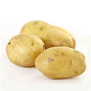 plants de pommes de terre bio 3 kg