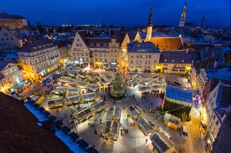 Decorated Christmas Trees by Tallinn Christmas Market Estonia