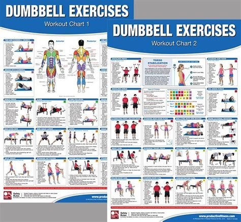printable exercise poster dumbbell exercises workout 2 poster professional wall