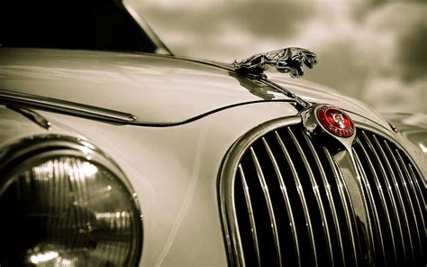 white jaguar car wallpaper hd closeup photography of white jaguar car hd wallpaper