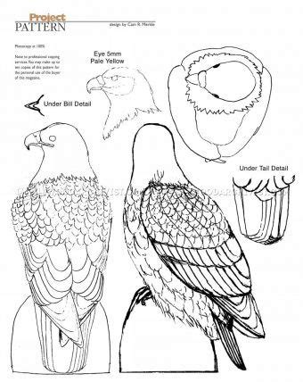 bald eagle carving wood carving patterns wood