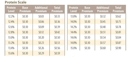 New Home Foundation 2011 protein scale colorado wheat