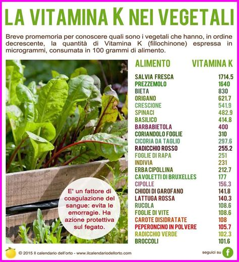 quali alimenti contengono vitamina k top 25 ideas about vitamina k on vitaminas k