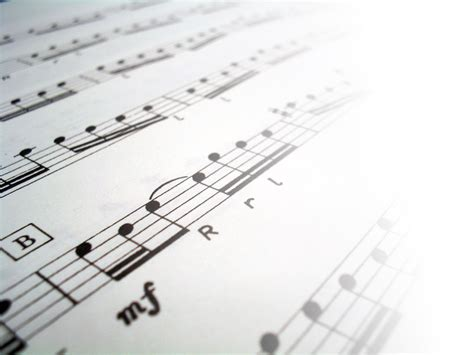 find music this is your brain on music suites culturelles