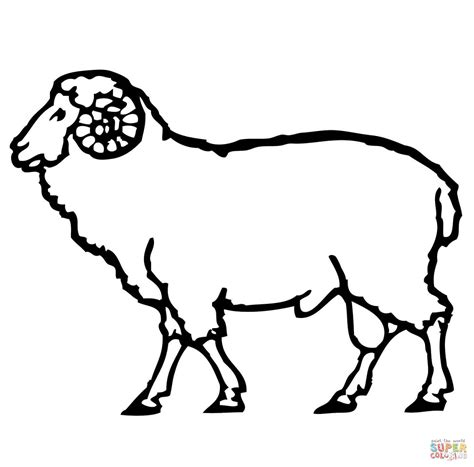 ram coloring page printable ram coloring page free printable coloring pages